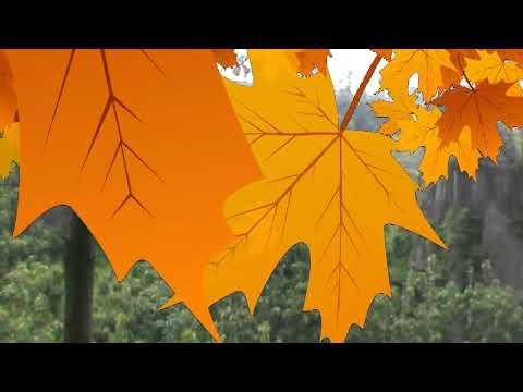 Alur dan Petunjuk Arah Menuju Batu Susun Solor Stonehenge Cerme Bondowoso