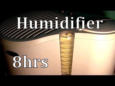 8hrs Humidifier