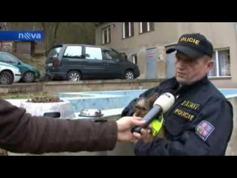 Policie setri.wmv