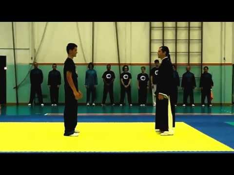 Chen Style Taiji Quan - Fighting Techniques Demonstration - 陈式 太极拳 - Combat Tai Chi Image 1