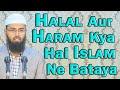 Halal Kya Hai Aur Haram Kya Ye Clear Hai Aur Jo Doutful Hai Use Nahi Karna Chahiye Isi Me Deen