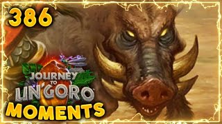 Strong 20DMG Boar..!! | Hearthstone Un'Goro Daily Moments Ep. 386 (Funny and Lucky Moments)