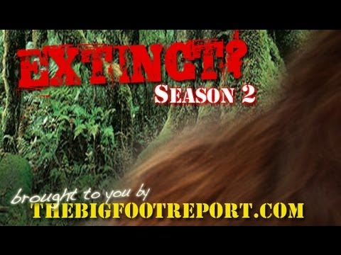 The EXTINCT? Podcast Season 2 Ep.2 - Team Tazer Bigfoot