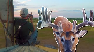 SCOUTING BIG VELVET BUCKS FROM A SILO! | Ted Miller's 2019 Velvet Rut!