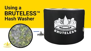 Washing Full Spectrum Chem D Bubble Hash in a Bruteless Vessel