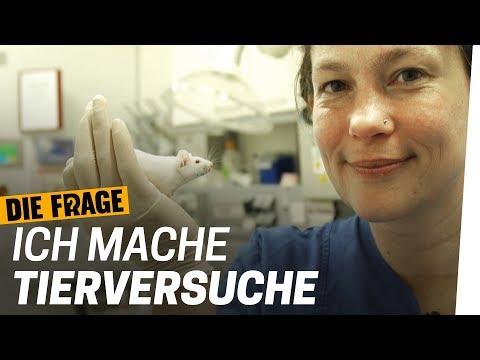 Tierversuche Doku: Warum brauchen wir Tierversuche? | Warum lassen wir Tiere leiden? Folge 4