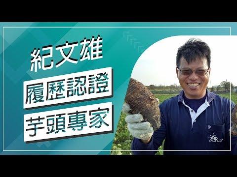 台灣-草地狀元-20180108 2/2-發角芋頭履歷達人