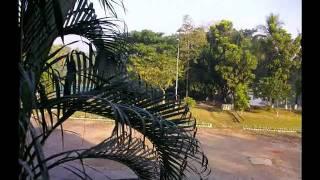 Nai telephone naire pion Papiya sarwar - YouTube.flv