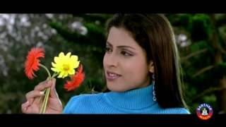 Feel My Love From Movie Pagal Premi HD
