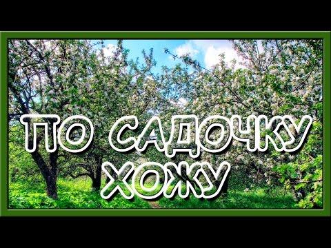 Українські народні пісні слухати. По садочку хожу