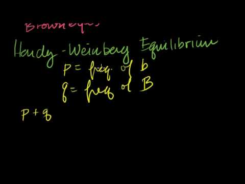 Hardy-Weinberg Principle
