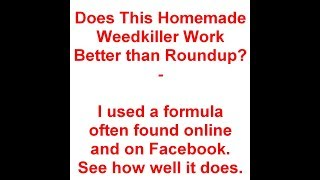 Homemade Weedkiller Vs Roundup - Which Works Best - Detailed Version