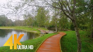 Beautiful Nature of Lithuania - 4K Virtual Walk - Short Preview Video