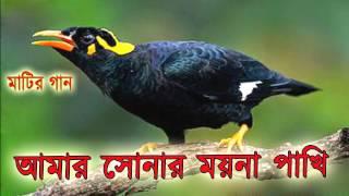 Download Bangla Song - আমার সোনার ময়না পাখি - OSMAN KHAN. 3Gp Mp4