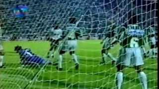 CORINTHIANS 1X3 PALMEIRAS - FINAL DO BRASILEIRÃO 15/12/1994