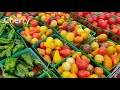 Weekly Farmers Market tour | Fresh organic fruits | Veggies | Nuts and more