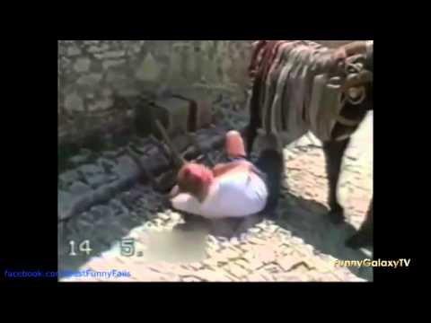 Como Montar Una Burra  Donkey Bestiality Bestialidade осле зоофилии ロバ獣姦1 video