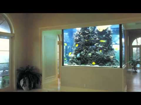 l 39 aquarium by amblard concept unique de d coration d 39 int rieur youtube. Black Bedroom Furniture Sets. Home Design Ideas