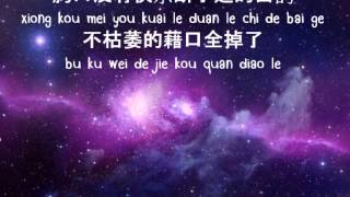 張惠妹-掉了 :::Amei Zhang- diao le::: (dropped) Lyrics