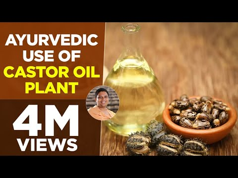 Ayurvedic use of Castor Oil Plant (Arand) | Acharya Balkrishna