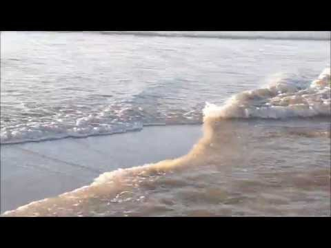 """Zip Waves at Mission Beach """"King Tides"""" with Sophia Bella"""