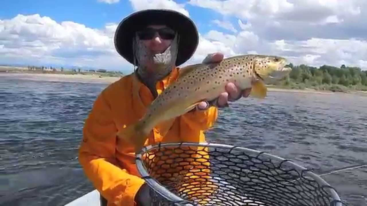 Wyoming float trip new fork river 2014 youtube for Fishing license for disabled person