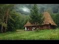 Жизнь в дикой природе сам построил дом