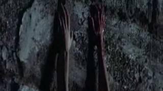 Watch Pink Floyd Goodbye Cruel World video