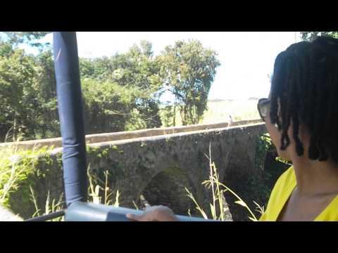 Bridge Made of Molasses -Blackmans Gully and Bridge St. Joseph in Barbados
