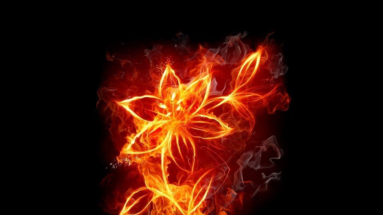 Как сделать огонь из цветов 27