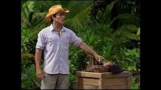 Survivor cook islands - Mutiny & aftermath.. Aitu 4 making it to final 4
