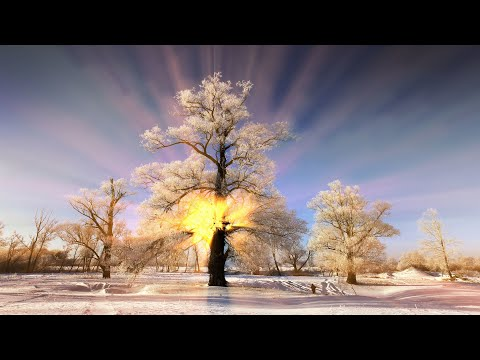 11 HOURS Relaxing Music, Winter Images, Emotional Music, Sleep Music, Spa