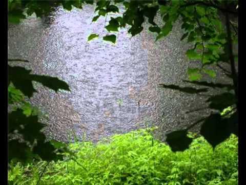 Песни дворовые - В ритме дождя