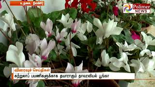 10K flowers were placed for Flower show in Government Botanical Garden   Polimer News