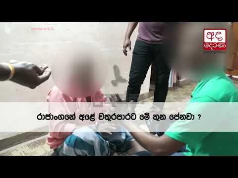 gajamuthu elephant p|eng