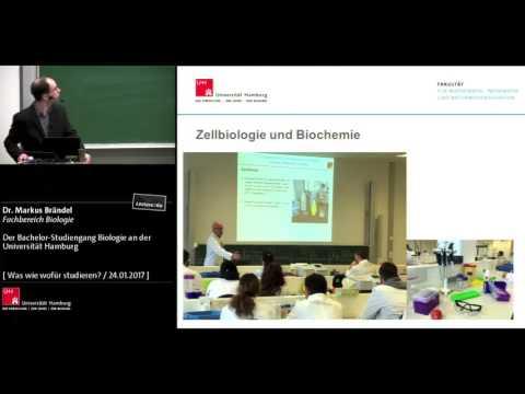 Der Bachelor-Studiengang Biologie an der Universität Hamburg