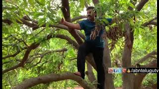 Gali Janardhan Reddy Climbs Mango Tree | Video Goes Viral