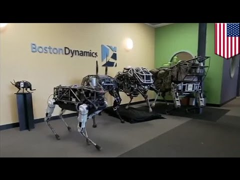 Google's robot dog: Boston Dynamics puts robot dog Spot through training day