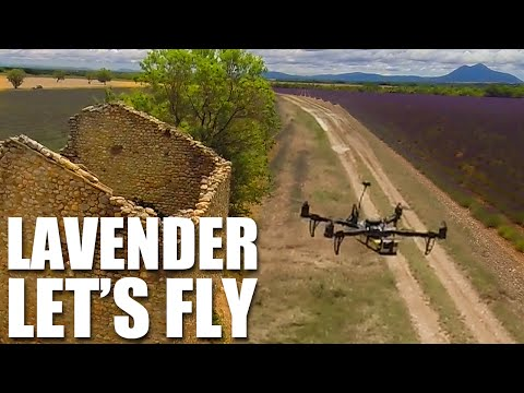 Flite Test - Lavender Let's Fly