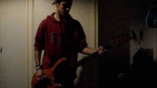 Give it Away Red Hot Chili Peppers Bass Cover by Snark162