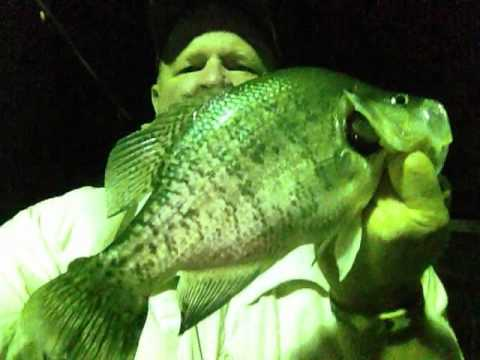 BNB Crappie Jigs Night Fishing!  NEW  Uncle Ricks Duck Cove Marina