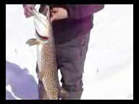 накидной рыбалка