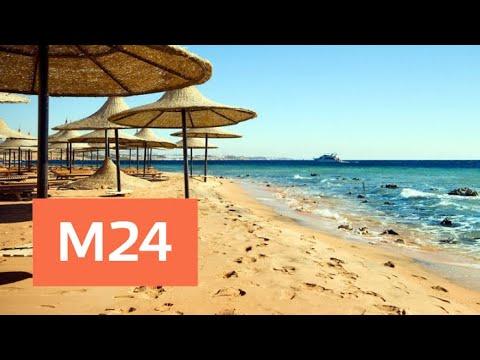 Когда россияне смогут вернуться на египетские курорты - Москва 24