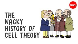 Download The wacky history of cell theory - Lauren Royal-Woods 3Gp Mp4