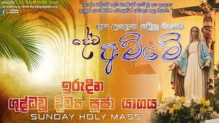 Sunday Holy Mass (Thirtyth Sunday in Ordinary Time)- 24/10/2021