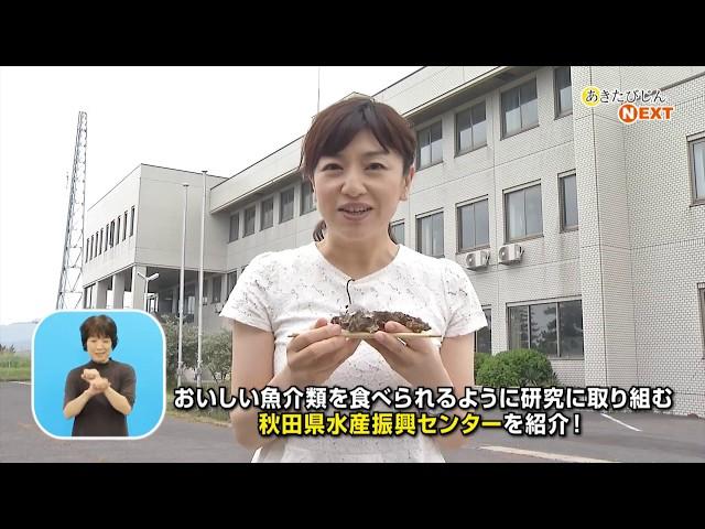 秋田のおいしい魚を安定的に食卓へ