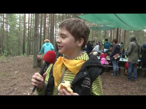 Видеосъемка детских квестов.