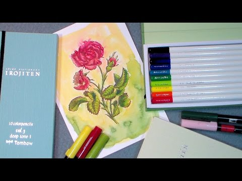 Coloring Demo with Tombow Irojiten Pencils and Dual BrushPens