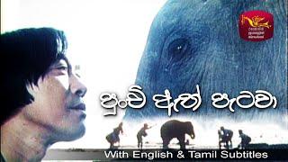 Little Elephant@Sri Lanka Rupavahini