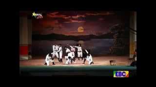 Balageru Idol  - Yod Addis Dance Group best performance
